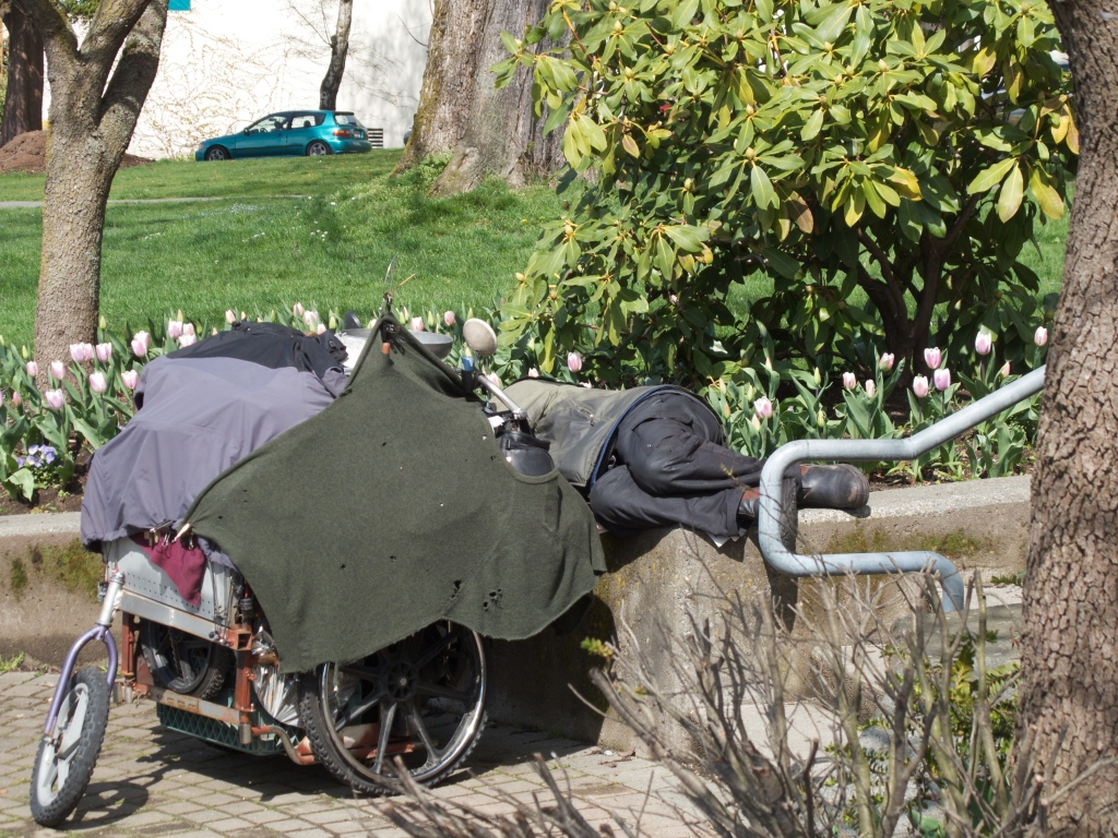 homeless person lying down next to cart covered with blankets