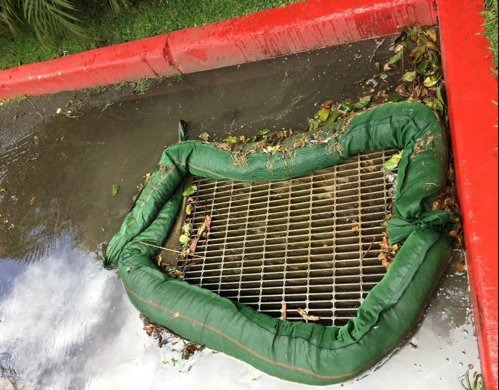 green biosocks surround storm drain in street preventing leaves and white substance out